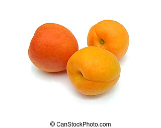 Apricots on a white background.