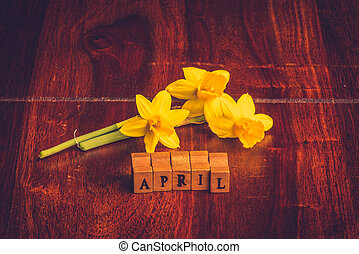 April month with yellow daffodils on dark wood