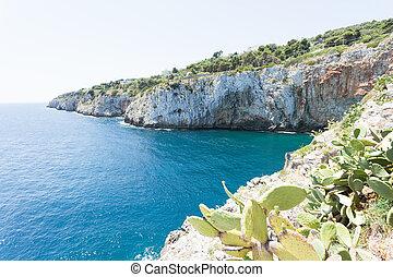apulia, grotta, zinzulusa, -, an, der, kuesten, von, der, berühmt, grotte, von, zinzulusa