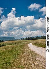 Apuseni Mountains landscape in Romania