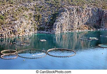 Aquaculture in Greece