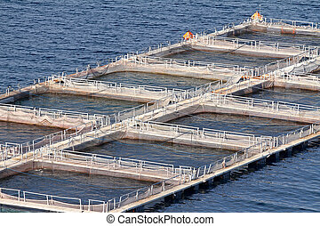 Aquaculture - Fish farms in Peloponesse, Greece