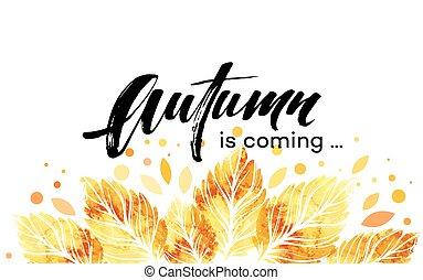aquarela, banner., pintado, folhas, ilustração, outono, vetorial, fundo, outono, design.