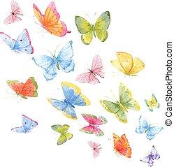 aquarela, borboletas, coloridos