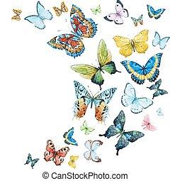 aquarela, borboletas