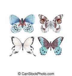 aquarela, borboletas, vetorial, jogo