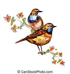 aquarela, cute, design., seu, pássaros