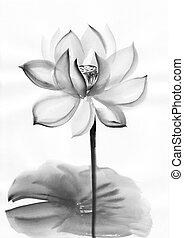 aquarela, flor lotus, quadro