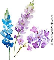 aquarela, flores