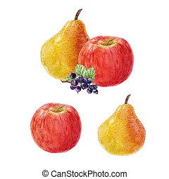 aquarela, fruta, composição
