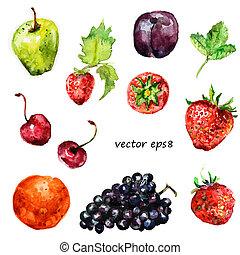 aquarela, fruta, seu, desenho
