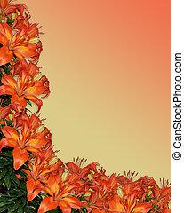 aquarela, lírios, laranja, floral