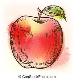 aquarela, maçã, quadro, vermelho