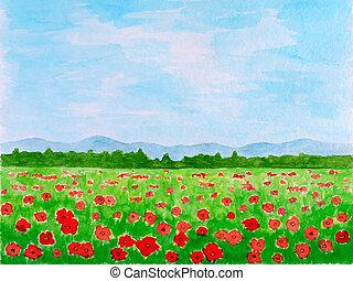 aquarela, papoula, flores, prado