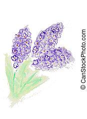 aquarela, ramo, lilás