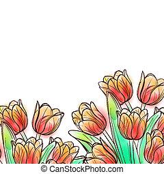 aquarela, tulips