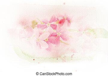 aquarell, blume, creeper), (rangoon, illustration.