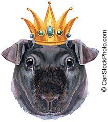 aquarell, dünn, weißes, schwein, krone, porträt, guinea, ...