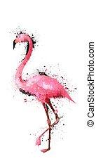aquarell, flamingo, grunge, abbildung