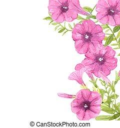 aquarell, petunien