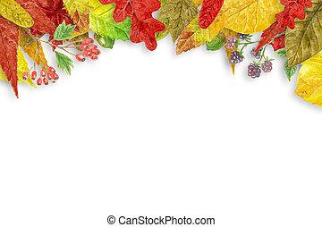 aquarelle, automne, fond