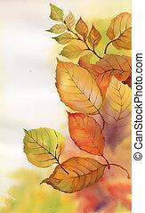 aquarelle, branche