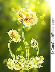 aquarelle, cadre, fond, fleur