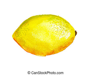 aquarelle, citron