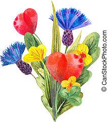 aquarelle, composition, à, différent, clair, fleurs sauvages