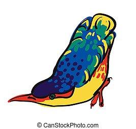 aquarelle, croquis, oiseau