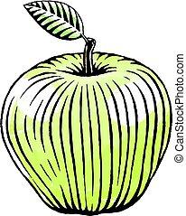aquarelle, croquis, pomme verte, encre