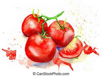 aquarelle, dessin, vegetables., tomates, juteux