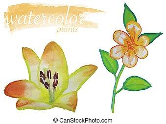 aquarelle, fleur, ensemble, jaune