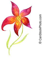 aquarelle, fleur