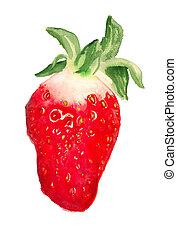 aquarelle, fraise, image