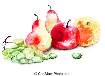aquarelle, fruit, illustration