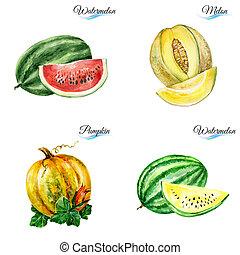 aquarelle, fruits