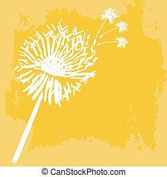 aquarelle, graphique, dandelion., vecteur