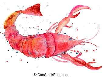 aquarelle, homard, illustration