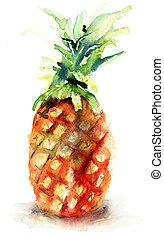 aquarelle, illustration, ananas