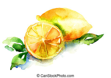 aquarelle, illustration, de, citron