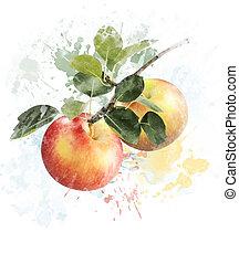 aquarelle, image, de, pommes