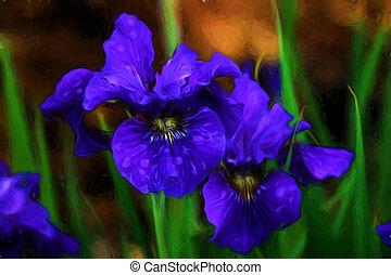 aquarelle, iris