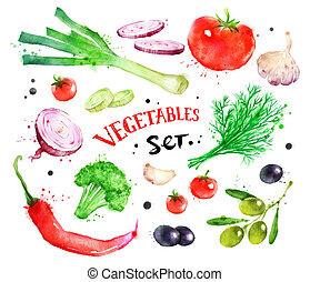 aquarelle, Légumes, ensemble, coloré