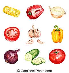aquarelle, légumes, ensemble