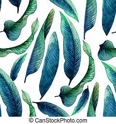 aquarelle, modèle, feuilles, heliconia