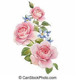 aquarelle, rose, composition