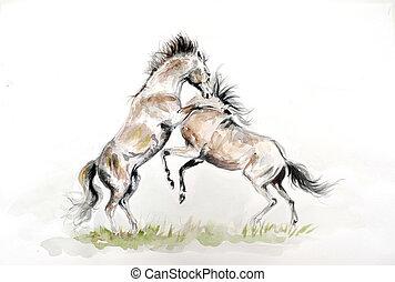 aquarellgemälde, von, kämpfen, pferden