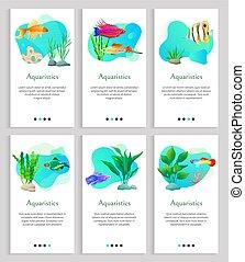 Aquaristics Fish and Seaweed, Tropical Animals - Aquaristics...