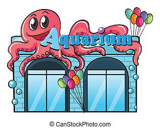 Aquarium and octopus